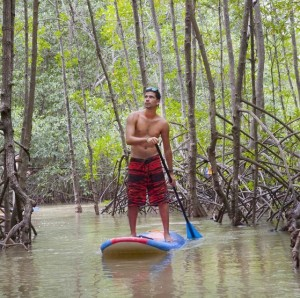Paddle Boarding in the Mangroves