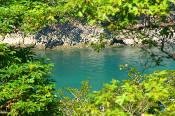 Shana Residences#310, Manuel Antonio, Costa Rica